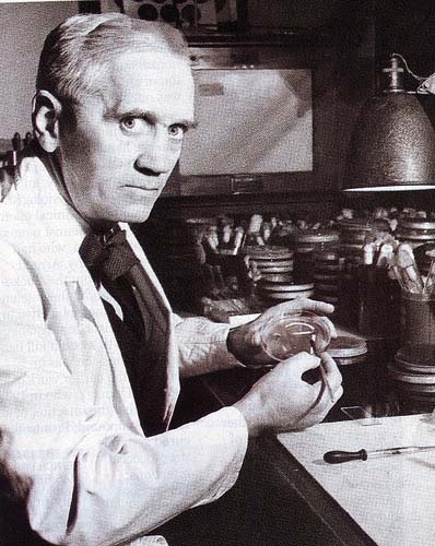 Alexander Fleming, Scottish biologist, pharmacologist and botanist. His best-known discoveries are the enzyme lysozyme in 1923 and the antibiotic substance penicillin.