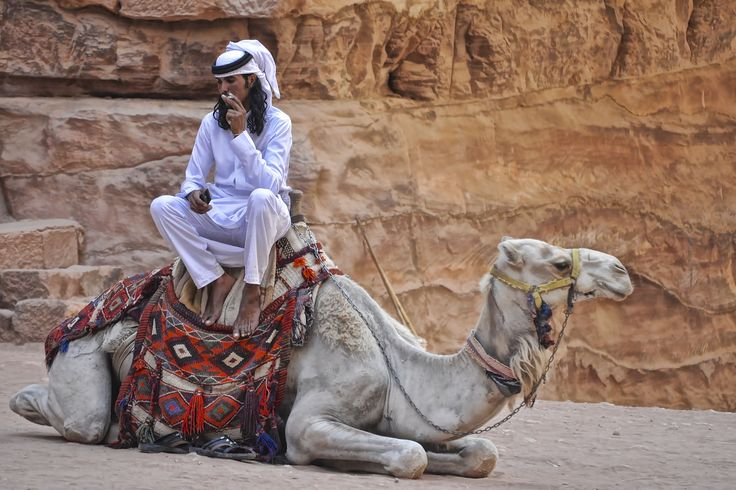 a true camel smoker