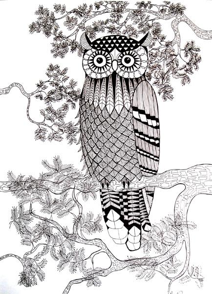 Owl Print Owl and Owl print
