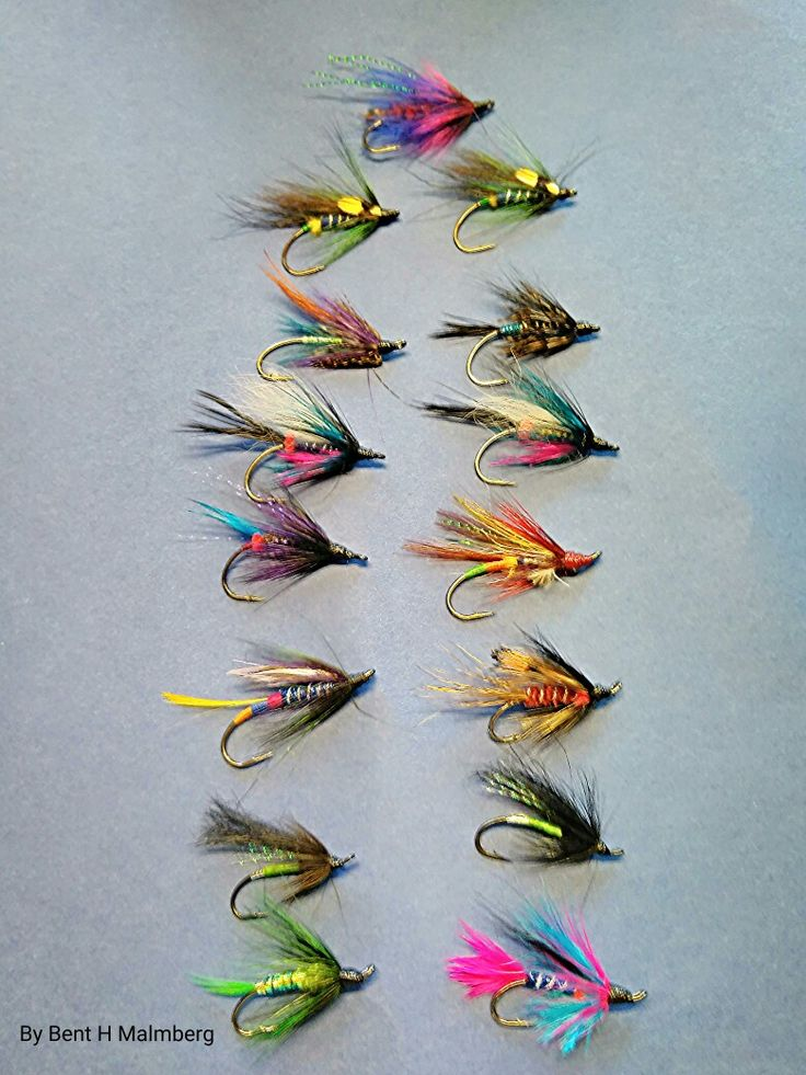 Bents Salomon flies