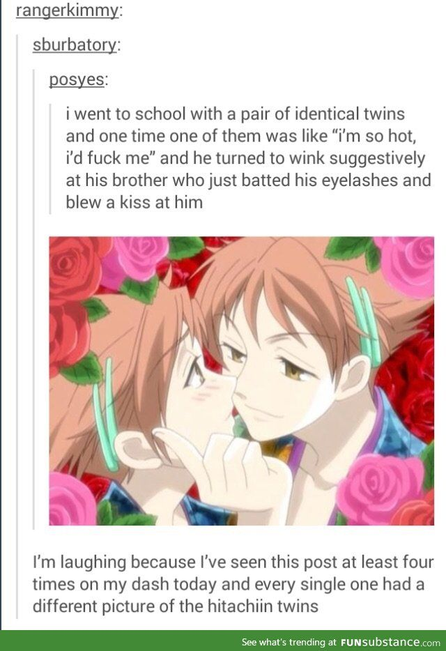 You definitely went to school with Hikaru and Kaoru