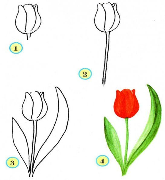 Learn To Draw For Kids Flowers Step By Step Pictured Tutorials Flower Drawing Easy Flower Drawings Drawing For Kids