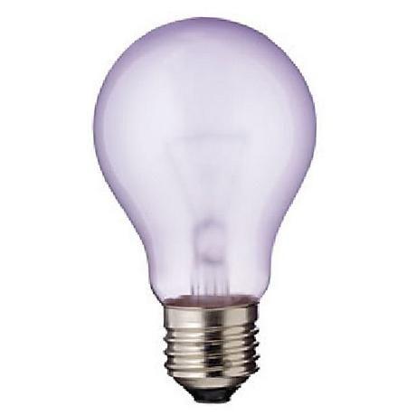 1000 Ideas About Grow Light Bulbs On Pinterest Grow