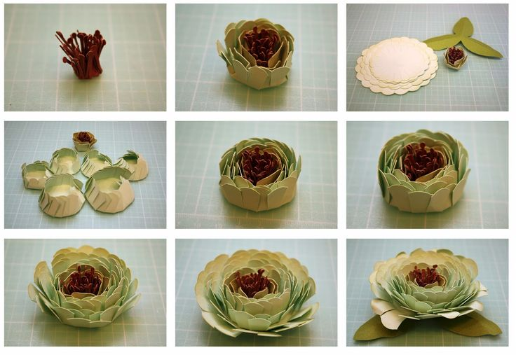 Bits of Paper: 3D Cornflower, Hibiscus, and Aster Paper Flowers!