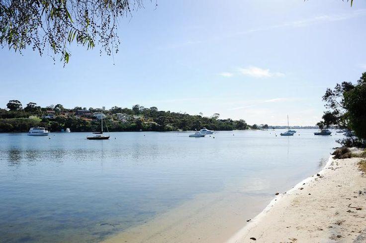 Beach, Swan River at Bicton, Perth, Western Australia