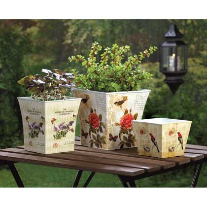 Busy garden. Each one has a vintage-inspired botanical illustration featuring butterflies, birds, and blooms in striking colors that will multiply the beauty of your growing greenery.