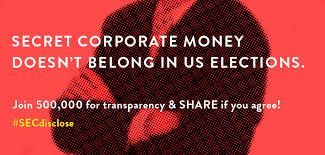 In what could be a major blow to the unspeakably horrendous Citizens United decision, it appears it well may be the Securities and Exchange Commission (SEC) that deals a body blow to secretive campaign donations that has polluted the electoral process in America. An alliance of shareholder activists and pension funds have swamped the SEC with calls to initiate a disclosure rule requiring publicly traded companies to report to shareholders all of their political donations.