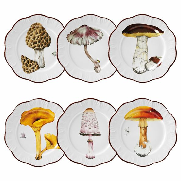 Les Champignons by Alberto Pinto | I have a thing for fungi(s) ~ pun intended! :)