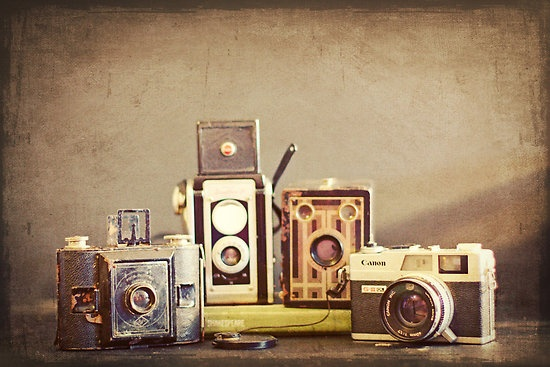 I love collecting vintage cameras.