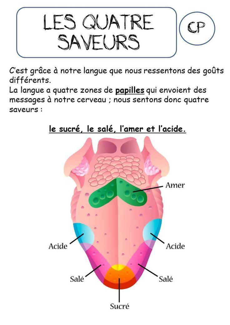Favorit 17 best Les cinq sens images on Pinterest | The five, French  GV44