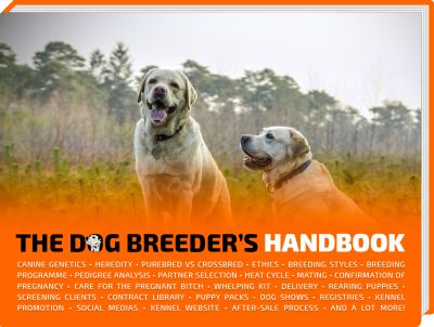 Best Dog Breeding Images On   Dog Care Whelping Box