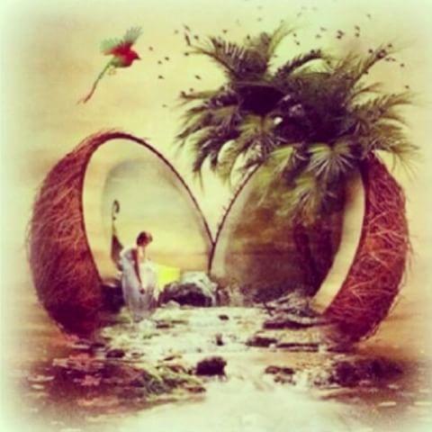 Mi #vida #mis #santos #obatala #ocha #ocan #osha #oba #ochun #orishas #obbatala #orisha #oricha #olofin #olocun #eleggua #elegua #yemaya #yoruba #yalorde #yemalla #coco #ashe #ache #alafia #santo #santera #santeria