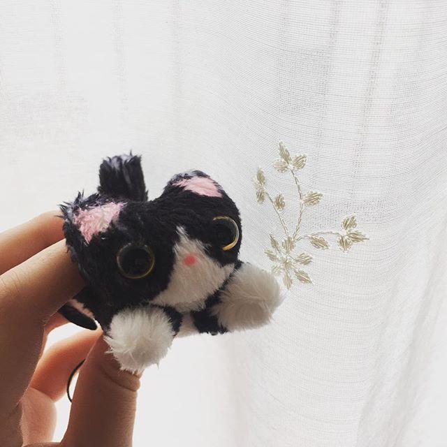 ずっと気になってた画面クリーナーストラップ。ももちゃんみたいで可愛くて買おうか迷ってたけどやっぱり買っちゃった( ฅ•ω•)ฅ かわいい〜♡ #ストラップ#ねこちゃん#ハチワレにゃんこ#もも#愛猫#そっくり#かわいい#お気に入り#mamaikuko