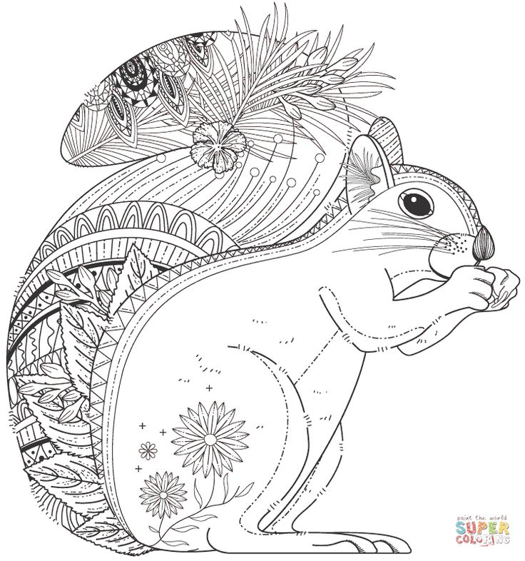 squirrel zentangle | super coloring | super coloring pages