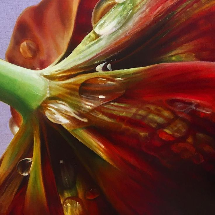 One of my prime delights in oil painting is the application of the paint itself. Zoom in. What appears photographic on your screen has a distinctly painterly physicality.  Detail of Tulipa liliacea 2012 oil on linen 96x126cm. http://ift.tt/2tw3w8c - #annemiddleton #oilpainting #oilonlinen #colourmixing #botanicalart #contemporaryart #gbartconsulting #oilpaint #paintapplication #juicy #australianartist #tulip #dewdrop