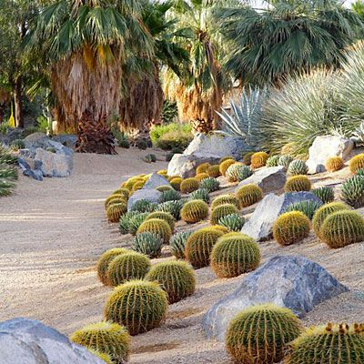 Compact cactuses, boulders, and palm trees are all it takes to create an iconic landscape.