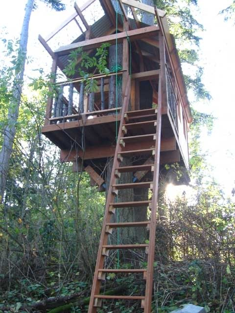 28 best treehouse ideas images on pinterest tree houses