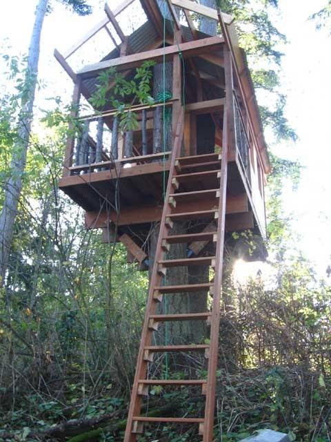 27 Best Treehouse Ideas Images On Pinterest Treehouse Ideas