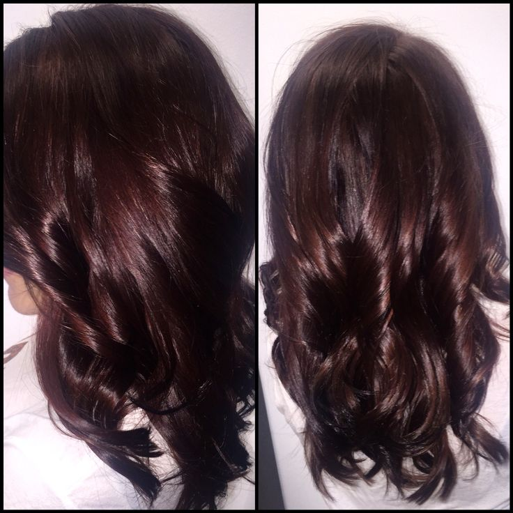 Perfect Warm Chocolate Brown Color Goldwell Haircolor