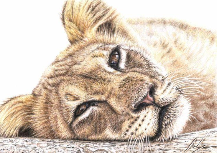 LÖWE, Fine Art Print A3, Tier Portrait Zeichnung von Künstlerin