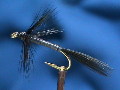 Beginner Fly Tying a Black Comet Variation with Jim Misiura - YouTube