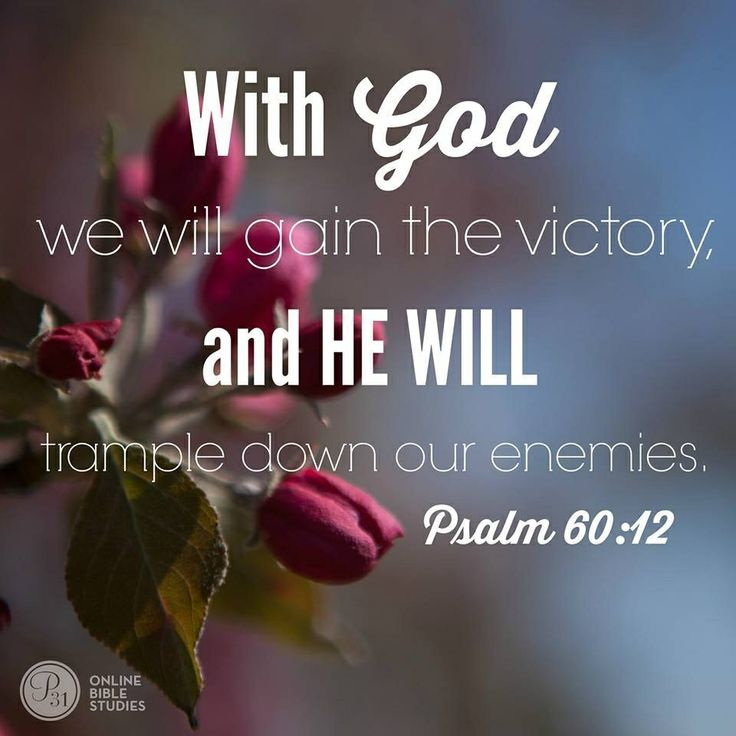Through God we shall do valiantly, for it is he who will tread down our adversaries. -- Psalm 60:12