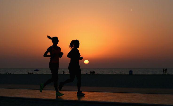 Se non vuoi rinunciare all'attività fisica anche quando sei in vacanza o quando le vacanze sono ancora lontane ma hai poco tempo da dedicare all'allenamento, abbiamo selezionato alcune riviste che possono aiutarti a trovare nuove idee per mantenerti sempre in forma.Sono tantissimi ormai gli studi sci