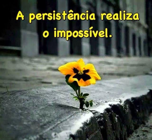 jrr.inversus.blogspot.com: Persistencia