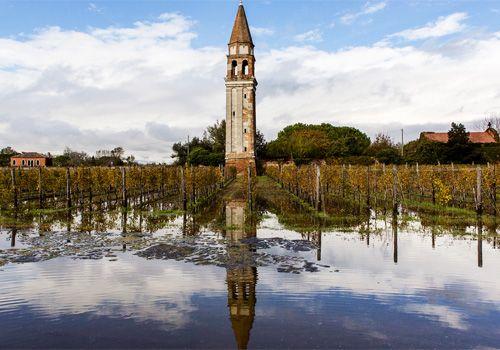 Wo Hemingway Enten jagte - eine Reise ins ursprüngliche Venedig http://www.culturefood.org/wo-hemingway-enten-jagte/