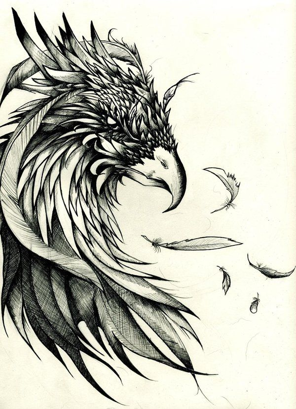 crow tattoo design | arnaud montebourg blog: Crow Tattoos Designs and Meaning                                                                                                                                                      Más