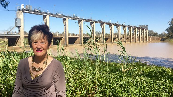 Donna Stewart's ties to the Murray-Darling Basin are strong. She has lived all her life on the banks of a river at the headwaters of system in southern Queensland.  The mighty Balonne River cuts past the township of Surat where she grew up, and it is the lifeblood of the town she now calls home, St George.  Currently mayor of the Balonne Shire, and a local councillor for 34 years, Cr Stewart has been through it all, from droughts to flooding rains.