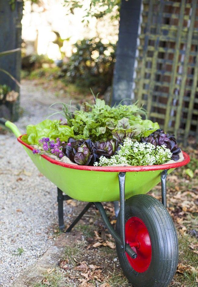 Garden on the go | Good Magazine
