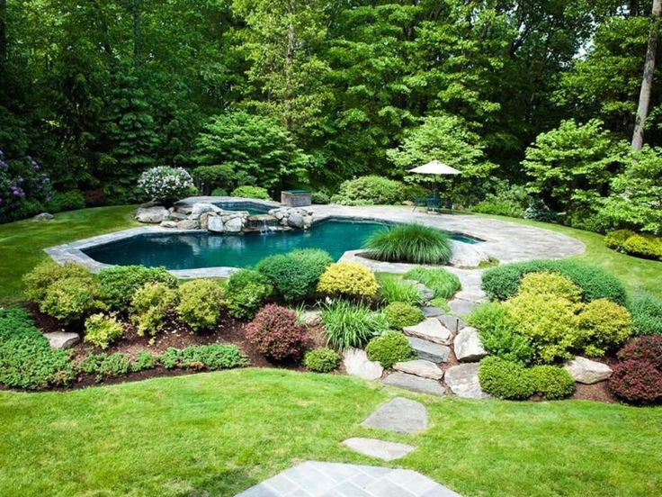 Lovely If I ever have a pool it will definitely look like a pond Gorgeous