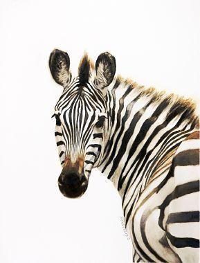 Zebra Art Gallery - works_donna_greenstein