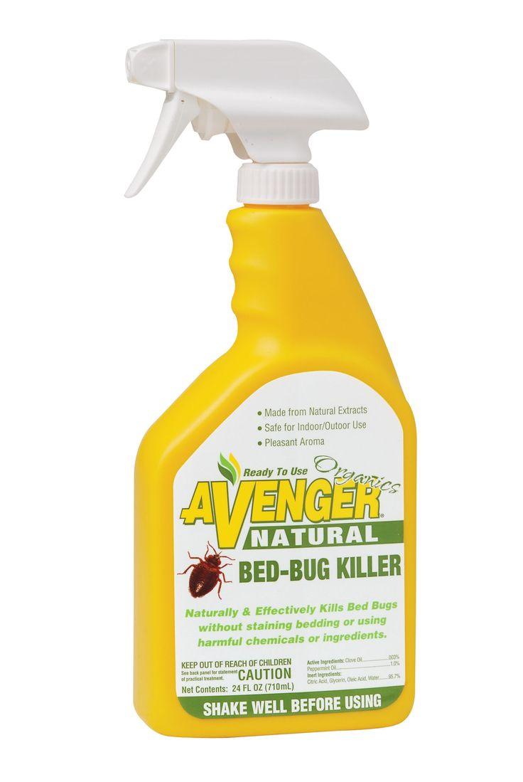 how to kill bed bugs spray