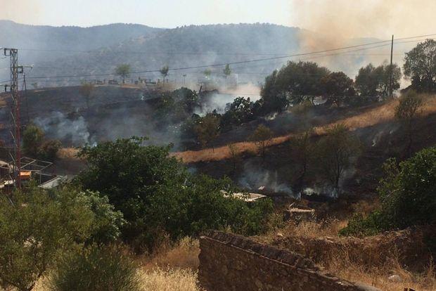 Incendio esta tarde en Villaharta, en las inmediaciones del pueblo   PACO HERRERA