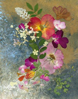 Pressed Flower Art. Shelley Xie