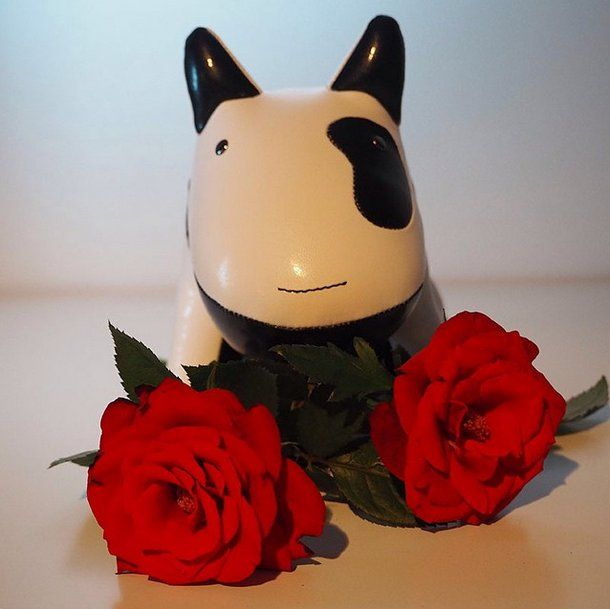 Well, hello ladies!  #züny #zunystore #zuny #xmasgarage #rose