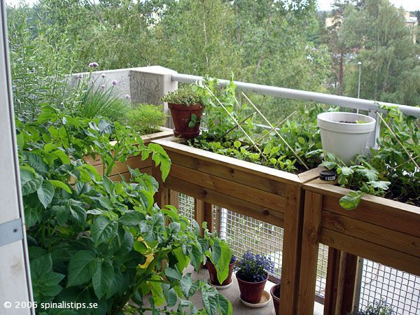 174 Best Urban Garden | Balcony Images On Pinterest | Gardening, Balcony  And Balcony Gardening