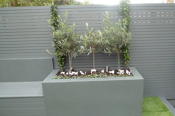Grey colour scheme agapanthus olives porcelain grey tiles lighting artificial grass modern garden design small garden design Balham Clapham Wandsworth Vauxhall Fulham Chelsea London