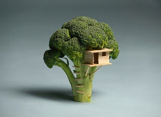Brock Davis' Photographs Bring New Meaning to Playing With Your Food! | Inhabitat - Sustainable Design Innovation, Eco Architecture, Green Building