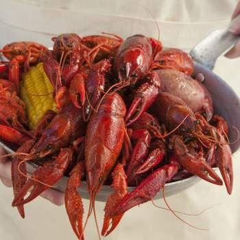 family crawfish boil recipe yummly link family crawfish boil gonola ...
