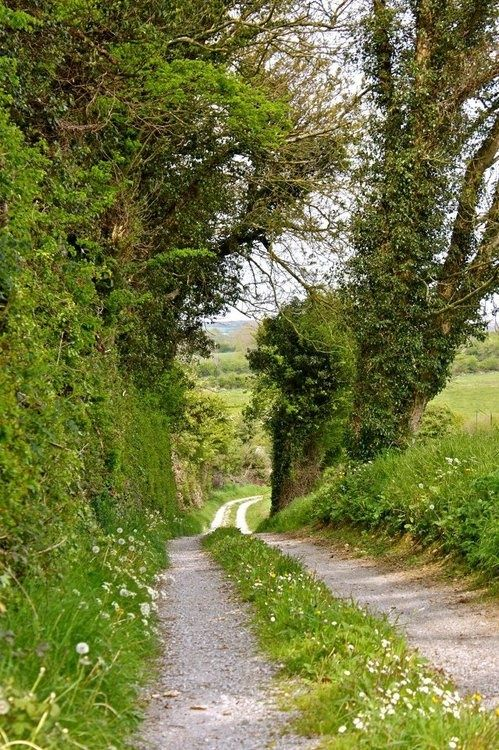 pagewoman: source:pinterest.com Country Lane…..