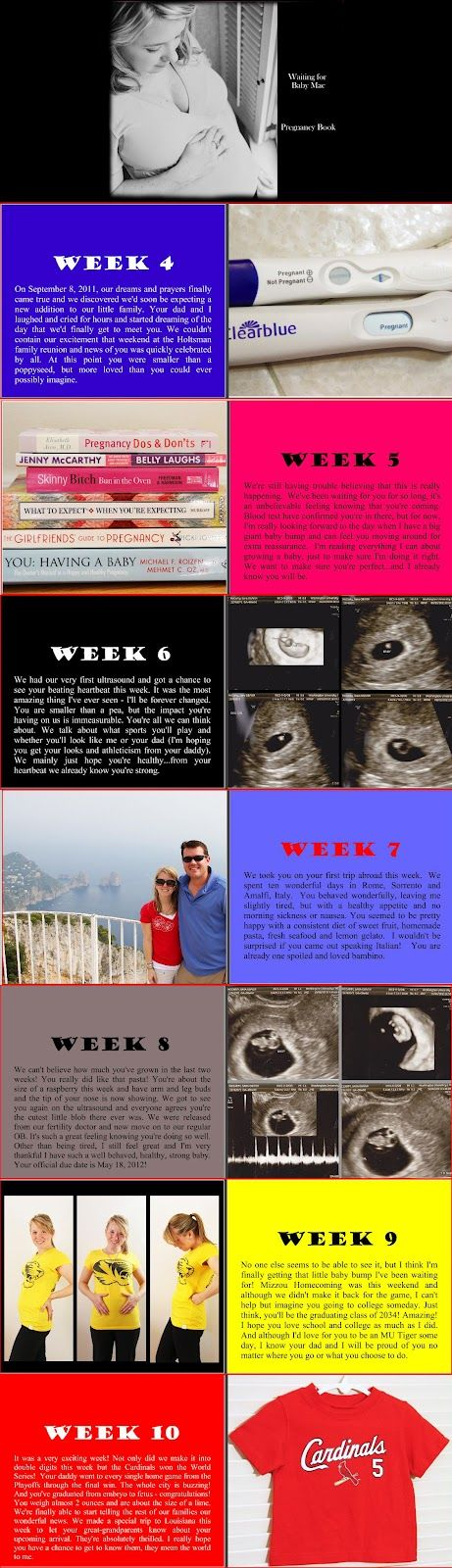 Running from the Law: Waiting for Baby Mac - Pregnancy Book