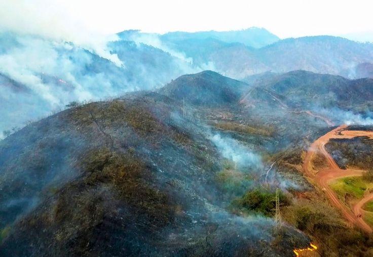 Más de 480 hectáreas de bosque quemadas en pulmón ambiental en Honduras