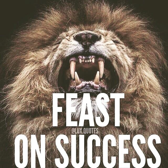Yes another big old lion quote! #motivation... - YouGotThisBro