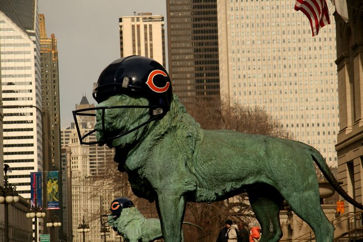 Lion with Chicago Bears Helmet in Downtown Chicago