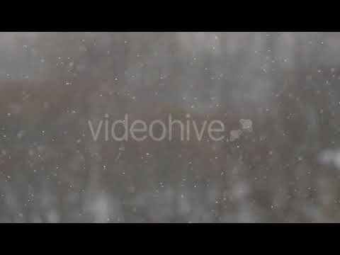 Falling Snow (Stock Footage)