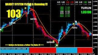 Vincents accurate forex signals