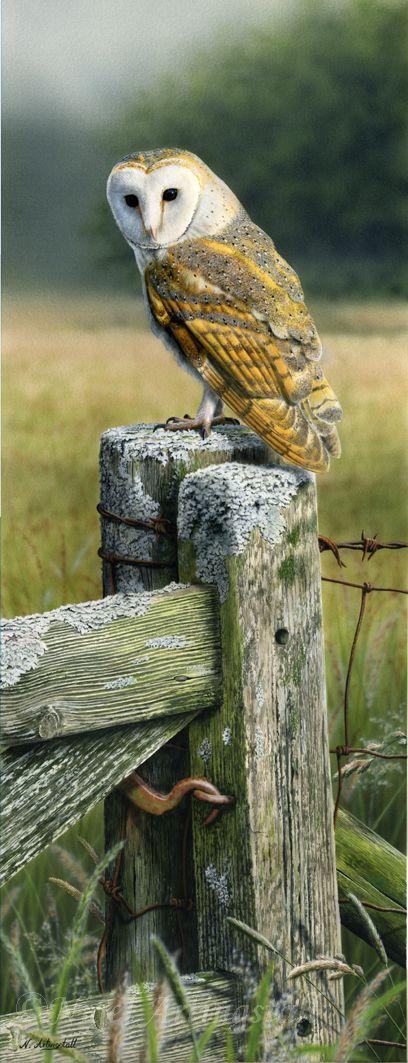 At The Old Meadow Gate (Sold )-Nigel Artingstall British - Wildlife Artist